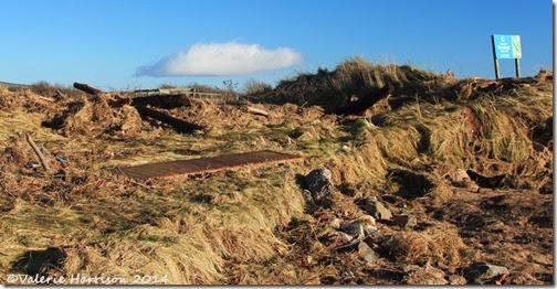 39-storm-debris