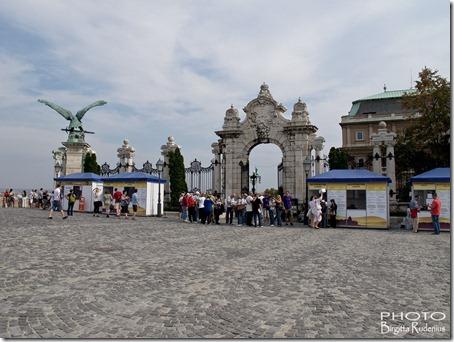budapest_20120912_vinfestival