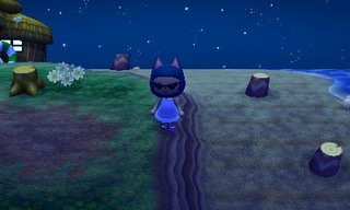 animal crossing new leaf beetle catch guide 07