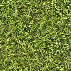 Seamless_grass_texture_by_hhh316