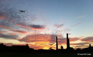 Sydney Park sunset (3)