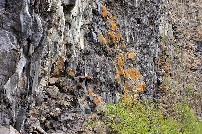 asbyrgi-canyon-10