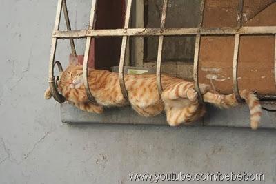 Os melhores lugares para dormir1