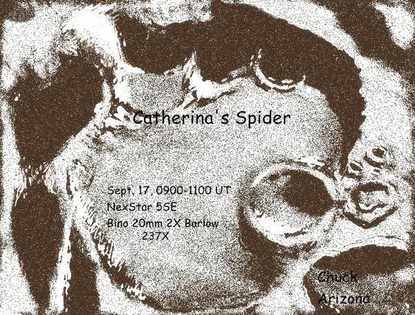 CatherinasSpider.jpg