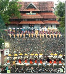 elephants-in-front-vadakumnathan-temple-thrissur-pooram