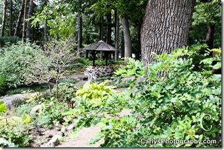 St Cloud Gardens-25