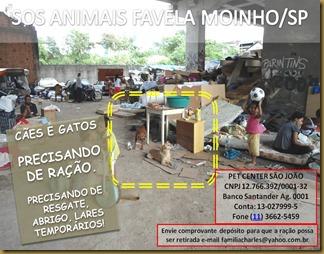 sos_animaisfmoinho04