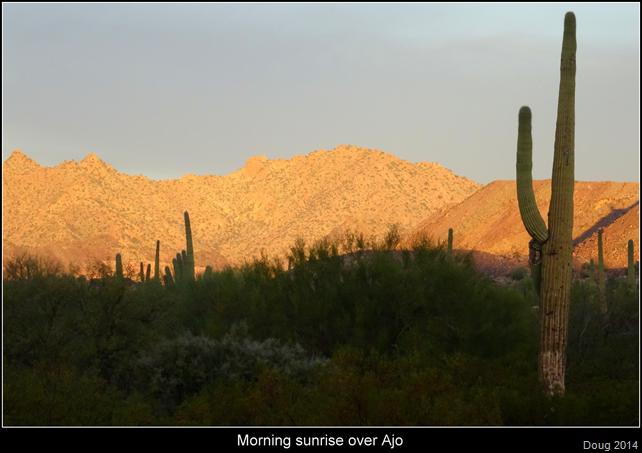 Golden sunrise over Ajo