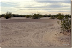 Recreation area at Imperial Sand Dunes.