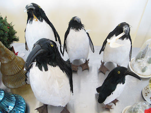 I liked this selection of penguin figurines.