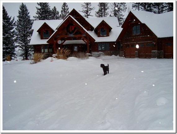 Montana Xmas (2)