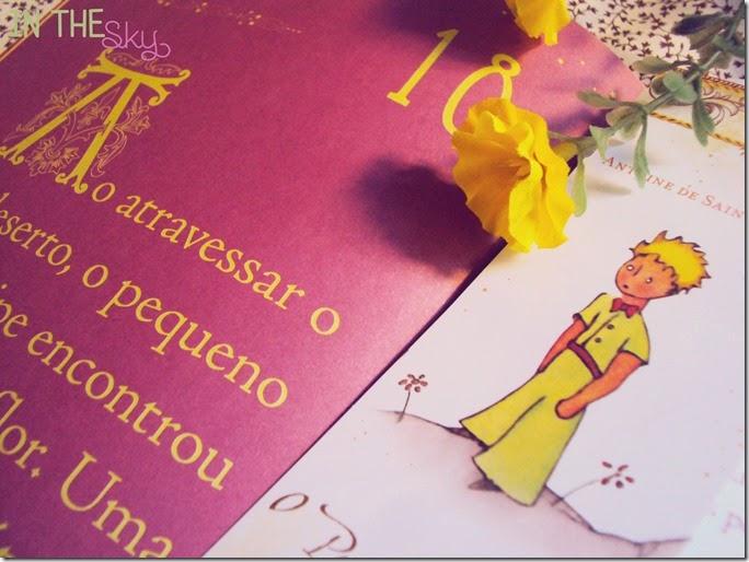 Pequeno Príncipe_08