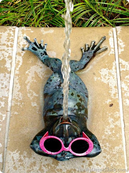 spitting frogs white river gardens