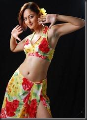 KAVERI JHA LATEST STILLS sexy stills