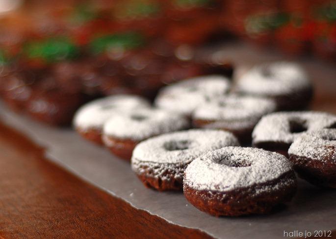 Donut44