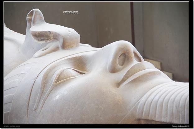 Egypt Day 11_03-26