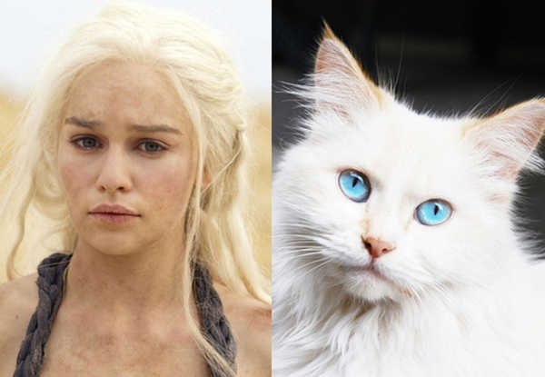 E se os personagens de Game of Thrones fossem gatos 15