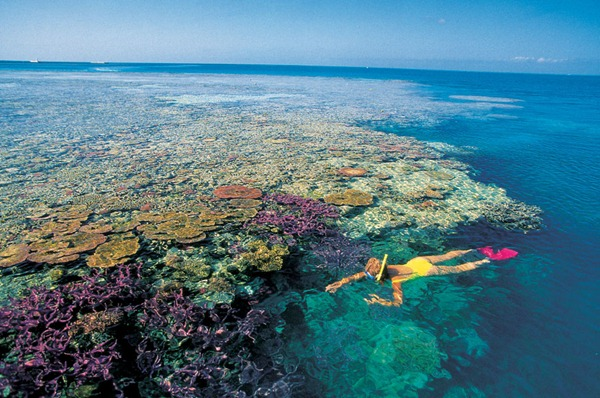 Great-Barrier-Reef-photo-11