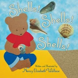 Shells Shells