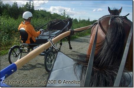 2011-trening-13august_01