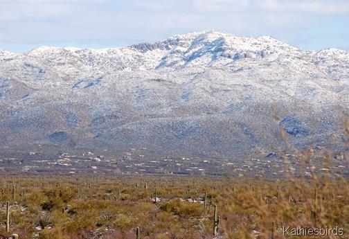 10. Catalinas-kab