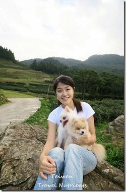 三峽熊空茶園 (16)