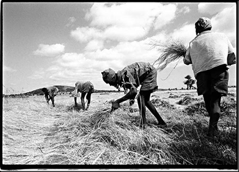 Southern Ethiopia  1993