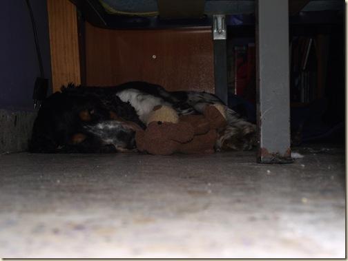 05CindySbado11Septiembre2010