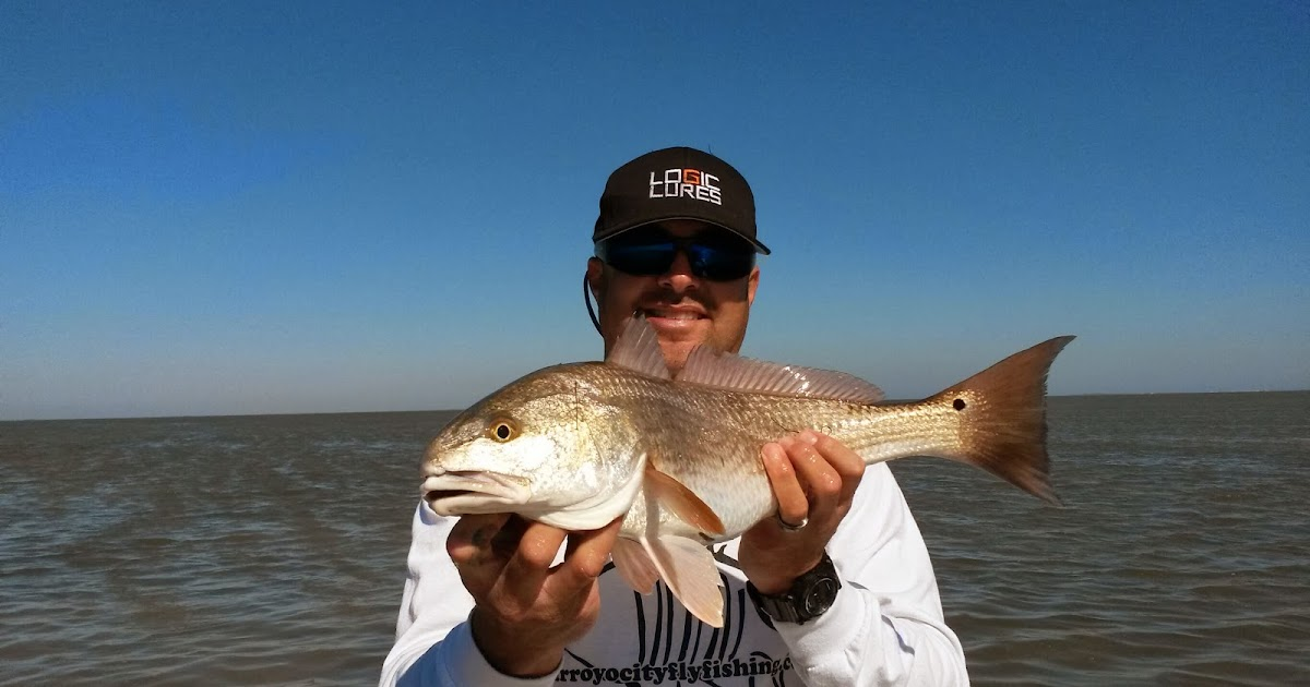 Fishing after the fronts have been good arroyo city fishing report for Arroyo city fishing