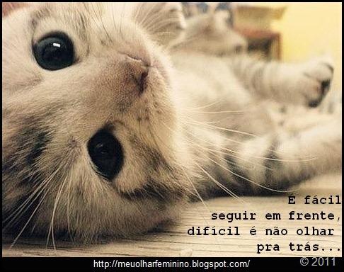 imagens-fofas-para-tumblr