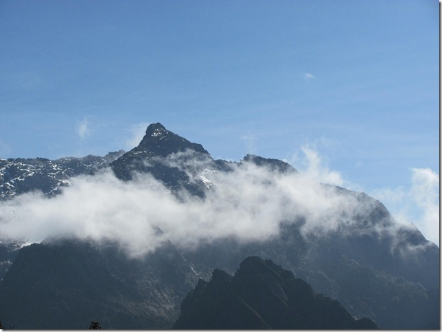 View of mt. speke, one of the  Rwenzori Mountains ranges