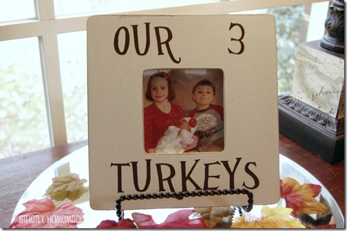 Our 3 Turkey Frame