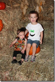 pumpkin patch 014