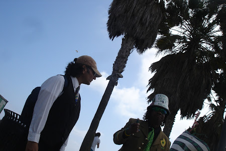 Plaja Venice Beach de langa Los Angeles: Capetenia ''verde'' din Venice Beach