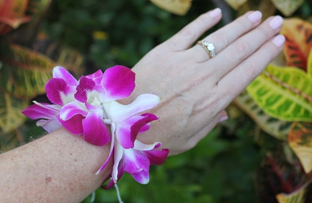 Hawaii 016