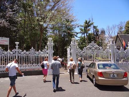 Gradina botanica Mauritius