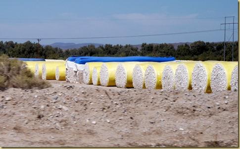 2012-09-28 - AZ, Oatman to  Yuma -017