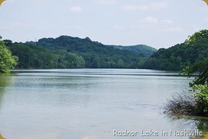 Radnor Lake in Nashville
