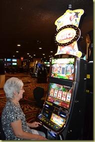 CC Bewildered Gambler