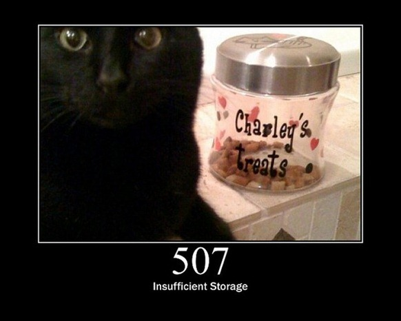 HTTP-Status-Cats-26