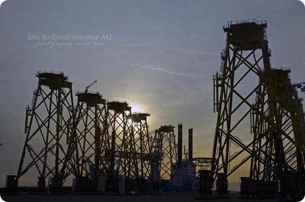 Bremerhavenrundfahrt 261113 (7)