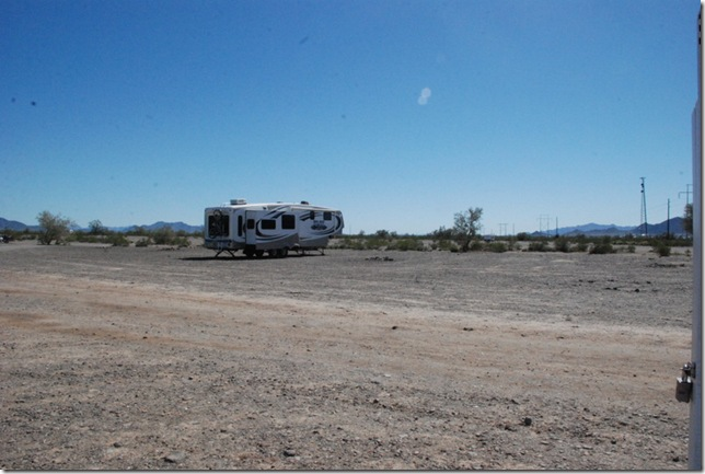 03-10-13 A Hi Jolly Quartzsite 009