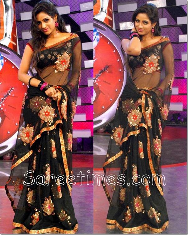Udaya_Bhanu_Shimmer_Saree