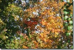 2014-10-19 2014-10-19 001 174