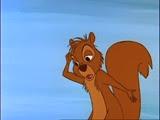 12 Moustique en écureuil