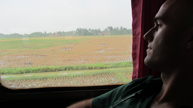 Staring out the train window at the endless sea of rice paddies.