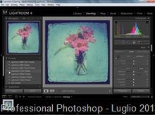 Professional Photoshop - Luglio 2013