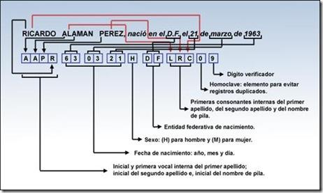 CURP datos necesarios de que se compone