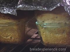 sprouted-einkorn-bread 023