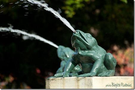 vatten_20121008_konst